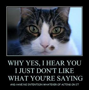 WHY YES, I HEAR YOU I JUST DON'T LIKE  WHAT YOU'RE SAYING