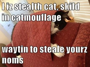 I iz stealth cat, skild in catmouflage  waytin to steale yourz noms