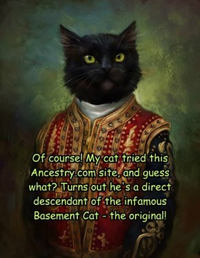 Of course! My cat tried this Ancestry.com site, and guess what? Turns out he's a direct descendant of the infamous Basement Cat - the original!