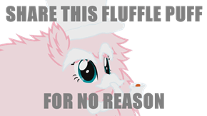 SHARE THIS FLUFFLE PUFF  FOR NO REASON