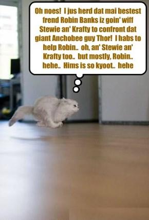 KKPS Great Anchobie Hunt: Teh bery popular Skolar Millie Tabishsmythe rushes to teh aid ob anudder kittie!
