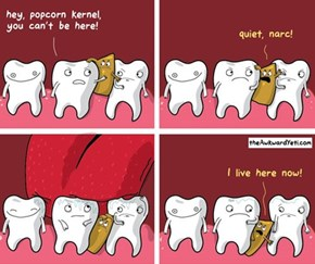 The Tooth Hurts