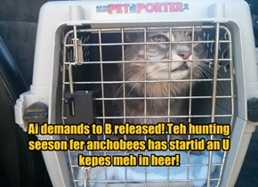 Ai demands to B released! Teh hunting seeson fer anchobees has startid an U kepes meh in heer!