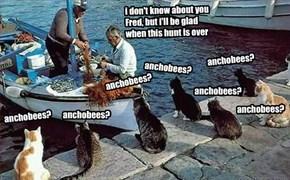 since the Anchobee Hunt started sum of da skolars had taken to hanging da docks and pesturing da fishur boats