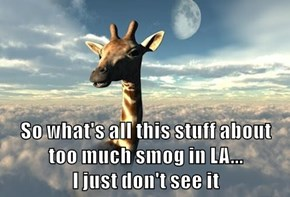 So what's all this stuff about too much smog in LA...                                I just don't see it