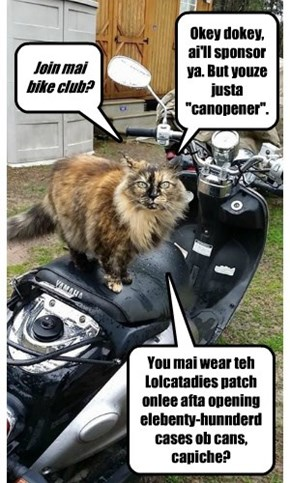 Lolcatladies' Motorcycle Club