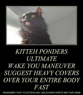 KITTEH PONDERS  ULTIMATE WAKE YOU MANEUVER SUGGEST HEAVY COVERS OVER YOUR ENTIRE BODY FAST