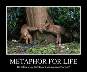 METAPHOR FOR LIFE