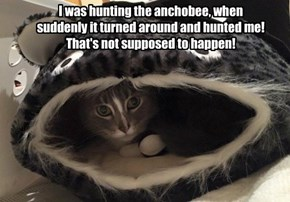 I was hunting the anchobee, when suddenly it turned around and hunted me! That's not supposed to happen!