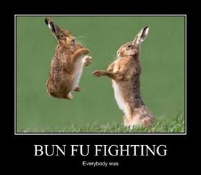 BUN FU FIGHTING