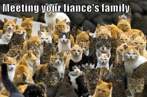 Meeting your fiance's family