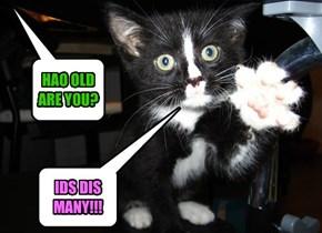 IDS DIS MANY!!!