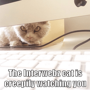 The Interwebz cat is creepily watching you
