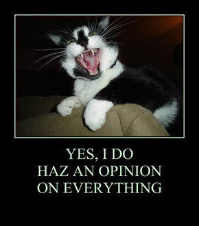 YES, I DO  HAZ AN OPINION ON EVERYTHING
