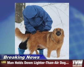 Breaking News - Man Holds Down Lighter-Than-Air Dog...