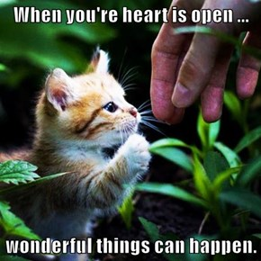 When you're heart is open ...  wonderful things can happen.
