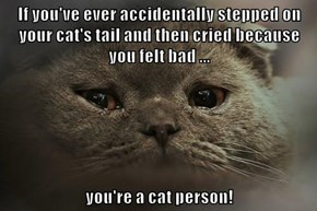 If you've ever accidentally stepped on your cat's tail and then cried because you felt bad ...  you're a cat person!