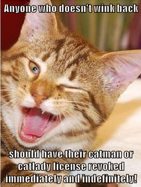 Anyone who doesn't wink back  should have their catman or catlady license revoked immediately and indefinitely!