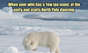 Winners of our International Polar Bear Day Caption Contest!