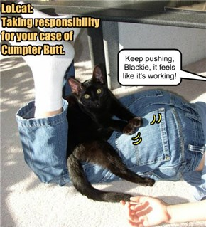 LoLcat:  Taking responsibility for your case of Cumpter Butt.