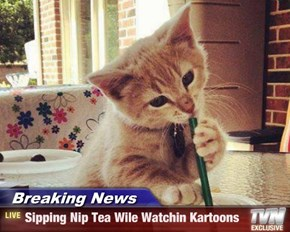 Breaking News - Sipping Nip Tea Wile Watchin Kartoons
