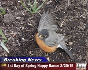 Breaking News - 1st Day of Spring Happy Dance 3/20/15