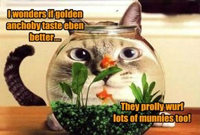 I wonders if golden anchoby taste eben better....