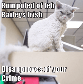 Rumpoled of teh              Baileys Irish  Disapproves of your Crime.