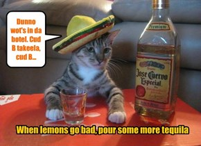 When lemons go bad, pour some more tequila