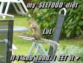 my *SEEFOOD* diet         LoL     If  I *see* food.. I  EET  it ♥
