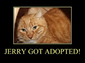 JERRY GOT ADOPTED!