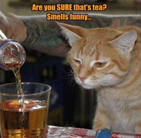 Are you SURE that's tea?   Smells funny...