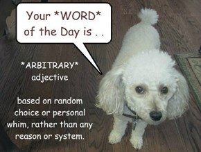 Nugget's WORD of the DAy.. Do you know what *arbitrary* means?