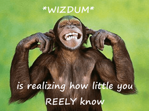 *WIZDUM*  is realizing how little you REELY know
