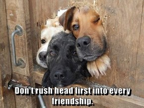 Don't rush head first into every friendship.
