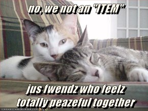 """no, we not an """"ITEM""""   jus fwendz who feelz                                             totally peazeful together"""