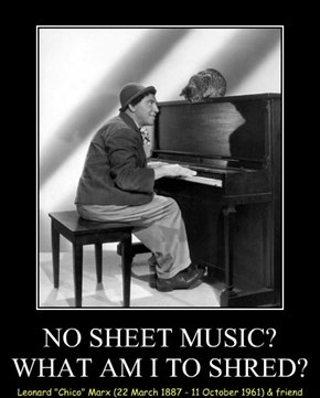 NO SHEET MUSIC? WHAT AM I TO SHRED?