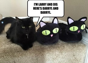 I'M LARRY AND DIS HERE'S DARRYL AND  DARRYL.