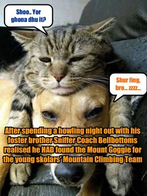 After spending a howling night out with his foster brother Sniffer Coach Bellbottoms realised he HAD found the Mount Goggie for the young skolars' Mountain Climbing Team
