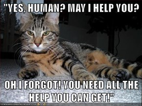 """""""YES, HUMAN? MAY I HELP YOU?  OH I FORGOT! YOU NEED ALL THE HELP YOU CAN GET!"""""""