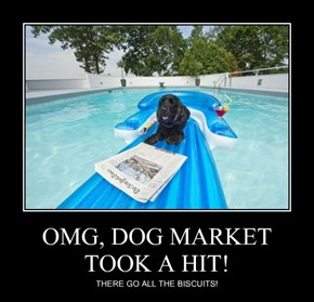 OMG, DOG MARKET TOOK A HIT!