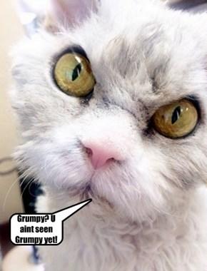 Grumpy? U aint seen Grumpy yet!