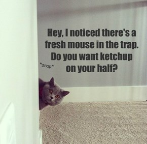 Hey, I noticed there's a fresh mouse in the trap.  Do you want ketchup  on your half?