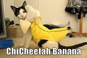 ChiCheetah Banana