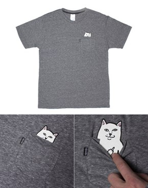 Naughty Cats Are Invading Our Shirts!