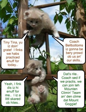 Tiny Tina an' Manfred dilijently practice der climing skills.. Coach Bellbottoms recruted dem for teh Mountain Climbing Team.. an' promised dat Chef Punkin would supply lots ob tasty foods to take on der climing adbenshurs!