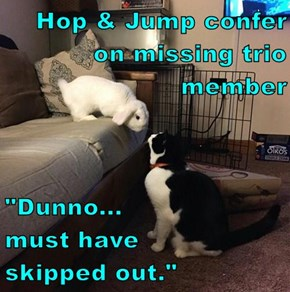 "Hop & Jump confer on missing trio member  ""Dunno...                  must have            skipped out."""