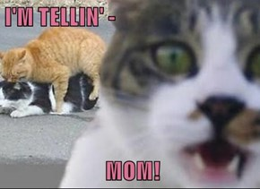 I'M TELLIN' -    MOM!