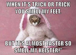 """WHEN IT'S TRICK OR TRICK YOU SMELL MY FEET.  BUT IT'S ALMOST EASTER SO SMELL MY KEISTER!"""""""