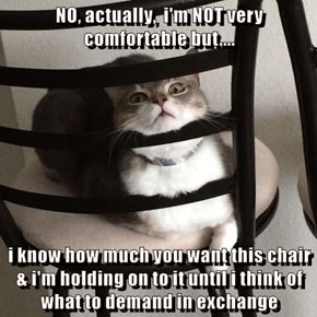 NO, actually,  i'm NOT very comfortable but....  i know how much you want this chair & i'm holding on to it until i think of what to demand in exchange